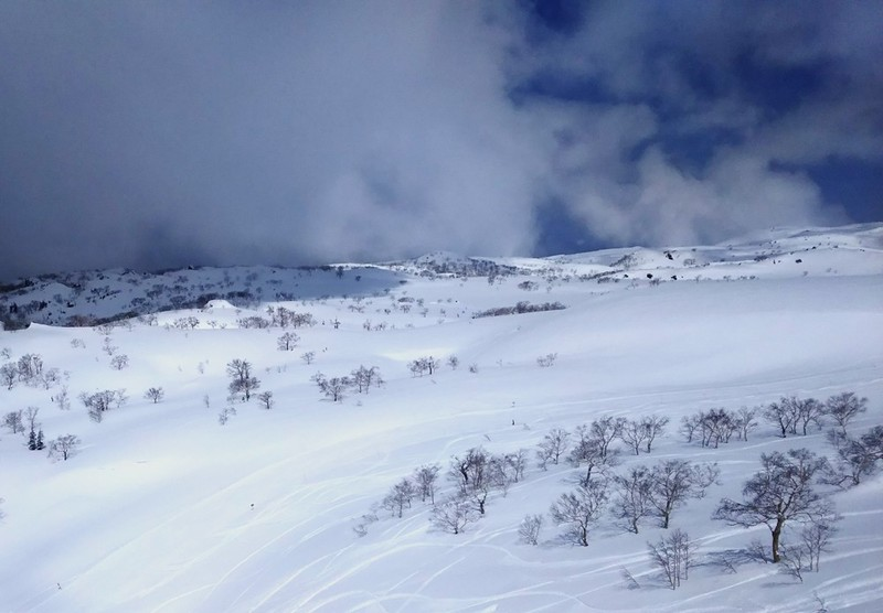 Asahidake alpine landscape