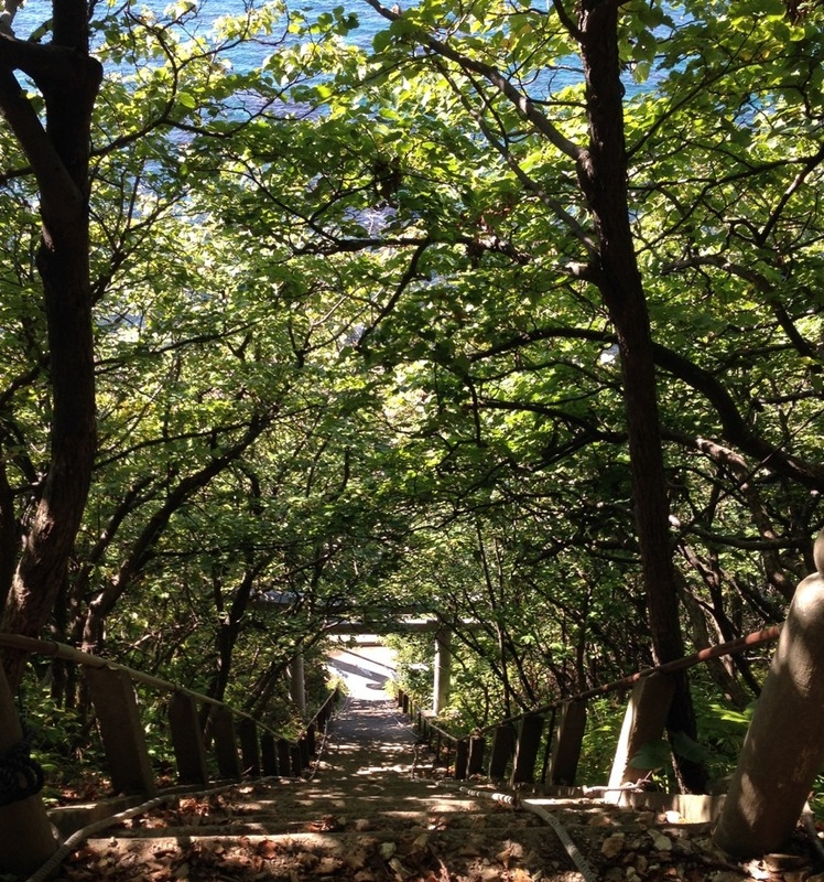 せたな町大田神社の階段と木漏れ日
