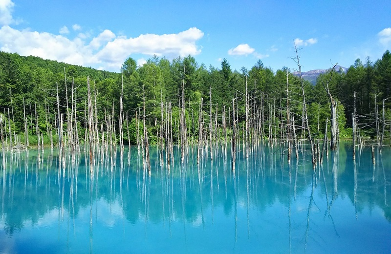 Aoiikei Blue Pond in Biei